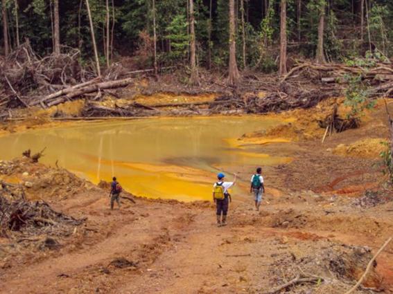 Área impactada pelo garimpo de ouro na Amazônia.